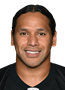Troy Polamalu Contract Breakdowns