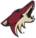 Arizona Coyotes Cap Forward Spending