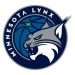 Minnesota Lynx 2021 Salary Cap
